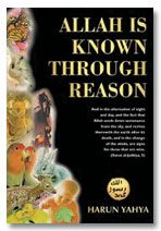 Allah is Known Through Reason (inside colour pages)
